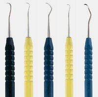 Anatomic Colours Scaler